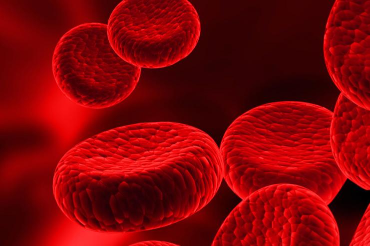 PRP: medicina rigenerativa in ambito ortopedico